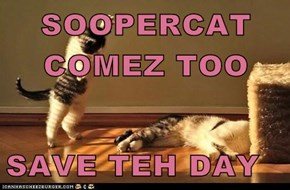 SOOPERCAT COMEZ TOO  SAVE TEH DAY