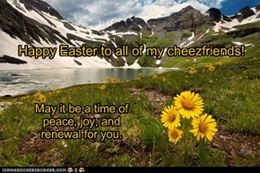 Happy Easter to all of my cheezfriends!