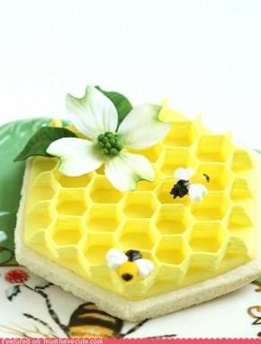 Epicute: Honeycomb Sugar Cookie