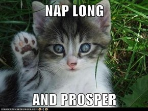 NAP LONG  AND PROSPER