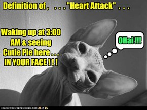 "Definition of ,    .  .  . ""Heart Attack""  .  .  ."