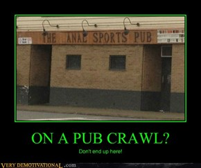 ON A PUB CRAWL?