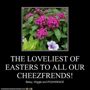 THE LOVELIEST OF EASTERS TO ALL OUR  CHEEZFRENDS!