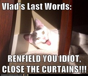 Vlad's Last Words:   RENFIELD YOU IDIOT, CLOSE THE CURTAINS!!!