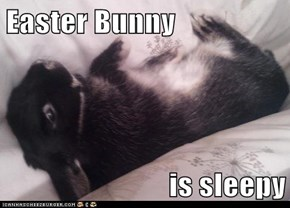 Easter Bunny                           is sleepy