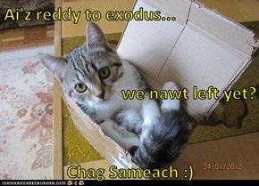 Ai'z reddy to exodus... we nawt left yet? Chag Sameach :)