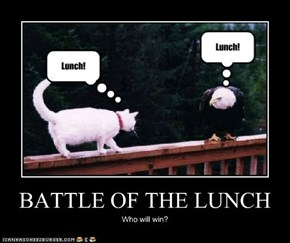 BATTLE OF THE LUNCH