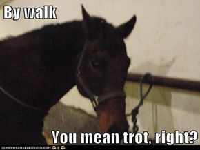 By walk  You mean trot, right?
