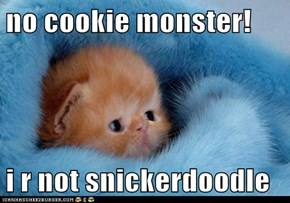 no cookie monster!  i r not snickerdoodle