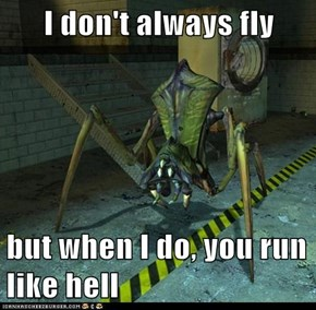 I don't always fly  but when I do, you run like hell