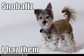 Snoballz  I haz them