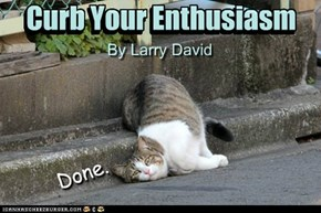 For JeffCat's Book Club:  Curb Your Enthusiasm