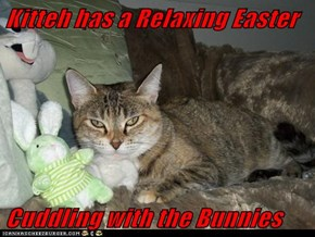 Kitteh has a Relaxing Easter  Cuddling with the Bunnies