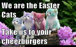 We are the Easter Cats  Take us to your cheezburgers