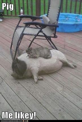 Pig  Me likey!