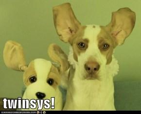 twinsys!