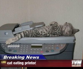 Breaking News - cat eating printer