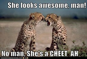 She looks awesome, man!  No man, She's a CHEET  AH