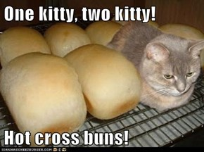 One kitty, two kitty!  Hot cross buns!