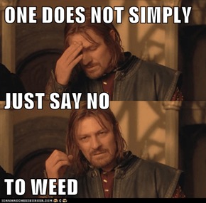 ONE DOES NOT SIMPLY JUST SAY NO TO WEED
