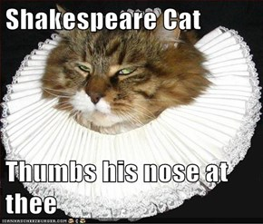 Lolcats: Shakespeare Cat