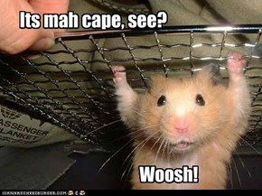 Hamster to the rescue!