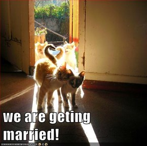 we are geting married!