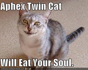 Aphex Twin Cat  Will Eat Your Soul.