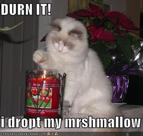 DURN IT!  i dropt my mrshmallow