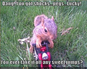 Dang! You got shocks...pegs...Lucky!  You ever take it off any sweet jumps?