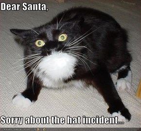 Dear Santa,  Sorry about the hat incident...
