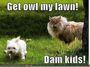 Get owf my lawn!  Dam kids!
