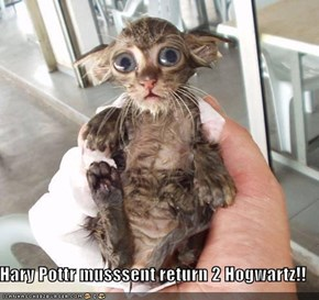 Hary Pottr musssent return 2 Hogwartz!!
