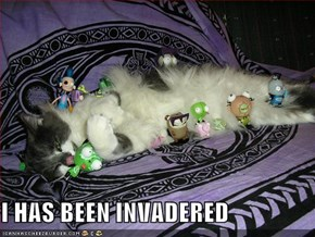 I HAS BEEN INVADERED