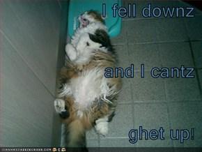 I fell downz and I cantz ghet up!