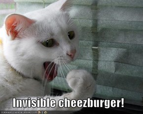 Invisible cheezburger!