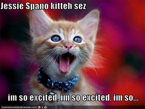 Jessie Spano kitteh sez  im so excited, im so excited, im so...