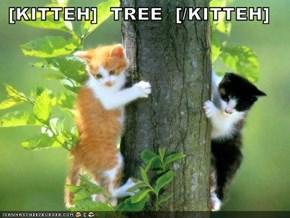 [KITTEH]  TREE  [/KITTEH]