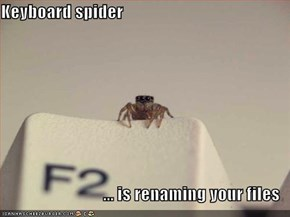 Keyboard spider  ... is renaming your files