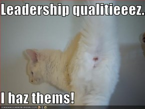 Leadership qualitieeez....  I haz thems!