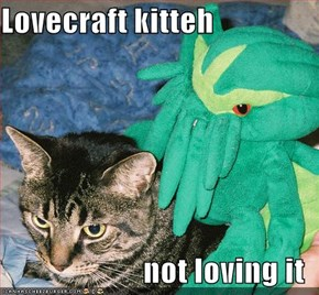 Lovecraft kitteh  not loving it