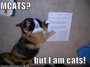 MCATS?  but I am cats!