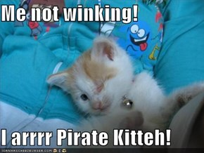 Me not winking!   I arrrr Pirate Kitteh!