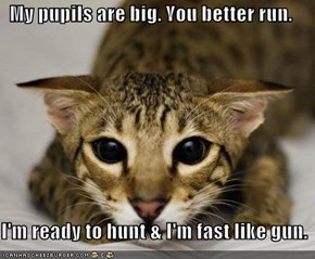 My pupils are big. You better run.    I'm ready to hunt & I'm fast like gun.