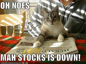 OH NOES  MAH STOCKS IS DOWN!