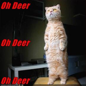 Oh Deer Oh Deer Oh Deer