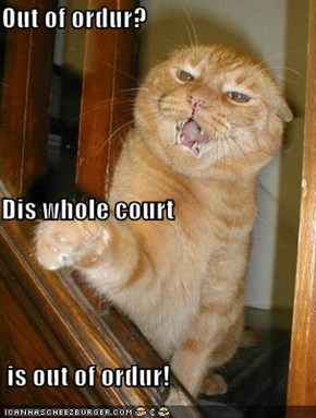 Out of ordur? Dis whole court  is out of ordur!