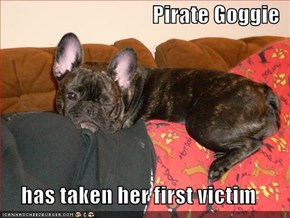 Pirate Goggie  has taken her first victim