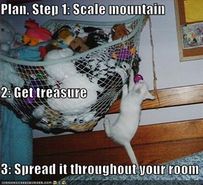 Plan, Step 1: Scale mountain 2: Get treasure 3: Spread it throughout your room