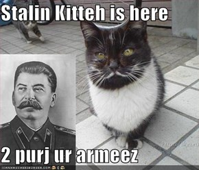 Stalin Kitteh is here  2 purj ur armeez
